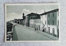 Cartolina Illustrata Coccolia - Panorama - Non Viaggiata - Other Cities