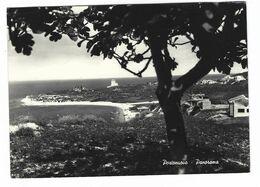 CLB011 - PORTONUOVO ANCONA PANORAMA 1959 - Italien