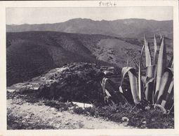 21124# ALGERIE CARTE FRANCHISE MILITAIRE FM NEDROMA ORAN Imp BACONNIER ALGER - Marcofilia (sobres)