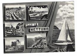 CLB034 -  SALUTI DA NETTUNO ROMA 5 VEDUTE 1950 CIRCA - Other Cities