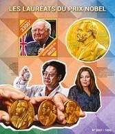 Niger 2015. [nig15516] Nobel Prize (s\s+bl) - Nobelpreisträger