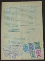 Yugoslavia 1956 Serbia Local KRUSEVAC Revenue Fiscal Stamps On Document BD49 - Storia Postale
