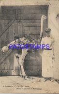 139464 AFRICA SENEGAL DAKAR COSTUMES MAN AND OSTRICH BREEDING POSTAL POSTCARD - Cartoline