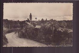 MAROC MARRAKECH LA KOUTOUBIA ET L ATLAS - Marrakech