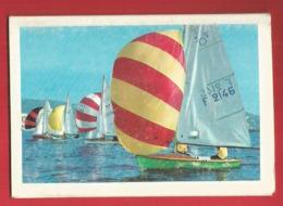 Calendrier Publicitaire 1968 - Montauban (82) Et Signalisation Routière - Formato Piccolo : 1961-70
