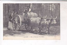 CPA DPT 40 LANDES , MISE EN BARRIQUE DE LA RESINE En 1914! - Teams
