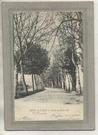 CPA -(01) PONT-de-VAUX - Aspect, à La Sortie Du Bourg, De La Levée De Fleurville En 1903 - Pont-de-Vaux