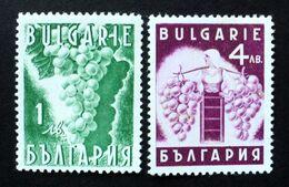 1938 Bulgaria Mnh - Uva Raisin Grape Traube Vino Vin Wine Vendange Vintage Viticultura Vigne Vinho - 2 Stamps - Ongebruikt
