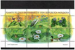 Moldova 2008 . Flowers, Birds. S/S Of 3v: 1, 3, 5L + 3 Labels . Michel # 39 - Moldavia
