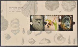 GRAN BRETAGNA 2009 FOGLIETTO PANE 2 FROM BOOKLET DX 45 1ST + 72p + 81p FOSSIL SHELLS  CHARLES DARWIN  SG 2905a  MNH N.P. - Ungebraucht