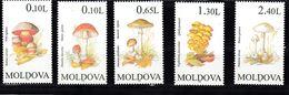 Moldavie 1996  Mi Nr  190 - 194, Paddenstoelen, Mushroom  Postfris, Mint - Moldavia