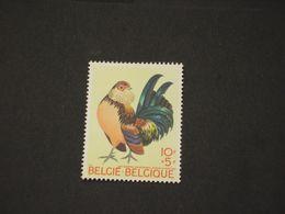 BELGIO - 1969 GALLO CEDRONE/COQ - NUOVO(++) - Belgium