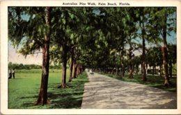 Florida Palm Beach Australian Pine Walk - Palm Beach
