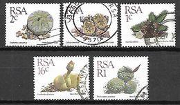 RSA   /  AFRIQUE  DU  SUD     -     FLEURS  /  CACTUS   -     Oblitérés - Sukkulenten