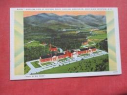 Airplane View Western North Carolina Sanatorium Near Black Mountain   North Carolina   Ref 4270 - Etats-Unis