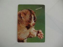 Gráfica Bocage Setúbal Portugal Portuguese Pocket Calendar 1988 - Formato Piccolo : 1981-90