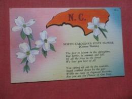 North Carolina State Flower     Ref 4270 - Etats-Unis