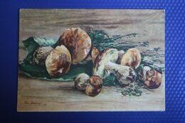 "Yakovlev ""Mushrooms"" - OLD PC 1956  - Mushroom - Champignon Boletus - Hongos"