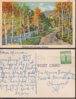 Postcard - USA - 1941 - Newaygo - Circulee - A1RR2 - Etats-Unis