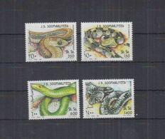 Somalia, 1995. [n0850] Snakes - Snakes