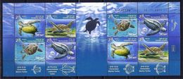 2016Israel2503-2506KLTurtles In The Marine Environment - Turtles