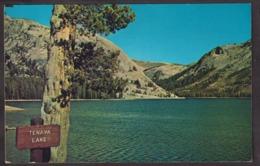 Postcard - USA - Circa 1950 - Tenaya Lake - Non Circulee - A1RR2 - Yosemite