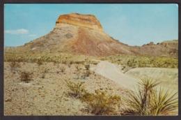 Postcard - USA - Circa 1960 - Castolon Park - Non Circulee - A1RR2 - Big Bend