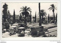 Carte De Hyères Les Palmiers Maison Chateaubriand ( Recto Verso )( Format C.P.A ) - Hyeres