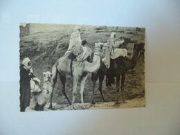 AFRICA AFRIQUE 8079 . CHAMELIERS CPA IMP A.D.I.A. NICE - Cartoline