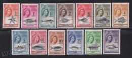 Tristan Da Cunha 1961 Yvert 42-54, Definitive Set. Royalty. Queen Elizabeth. Fauna. Marine Life, Fishes - MNH - Tristan Da Cunha