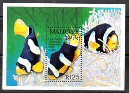 Hoja Bloque De Maldivas N ºYvert  270 ** PECES (SHIPS) - Falkland Islands