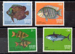 Serie De Sri Lanka N ºYvert  446/49 ** PECES (SHIPS) - Sri Lanka (Ceylon) (1948-...)