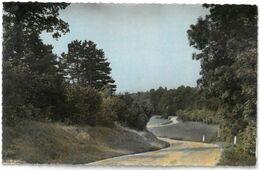CPSM FERICY - Route De Barbeau - Ed. CIM N°77288 - Année 1964 - Andere Gemeenten