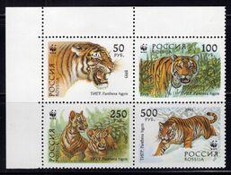 1993 Russia Mi# 343-46 Ussurian Tiger. Fauna MNH** P103 - 1992-.... Federation