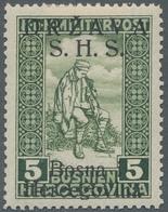 "Jugoslawien: 1918, ""disability Care With Overprint In Latin"", Mint Hinged, Very Fresh And Fine, Mi. - 1919-1929 Reino De Los Serbios, Croatas Y Eslovenos"
