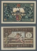 Deutschland - Notgeld - Ehemalige Ostgebiete: FREIENWALDE IN POMMERN; 1920-1921, Partie Von 24 Notge - Germania