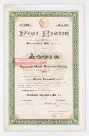 Alte Aktien / Wertpapiere: HISTORISCHE WERTPAPIERE - DEUTSCHES REICH - 1895, Gründer-Aktie Der Pfalz - Ohne Zuordnung