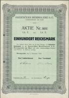 Alte Aktien / Wertpapiere: HISTORISCHE WERTPAPIERE - DEUTSCHES REICH. 1929, Aktie über 100 Reichsmar - Azioni & Titoli