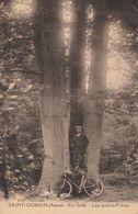 02 - SAINT GOBAIN - En Forêt - Les Quatre Frères (Arbre Remarquable) - Other Municipalities