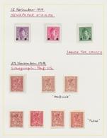 Jugoslawien: 1918-1920, Spezialisierte Sammlung Der Ersten Ausgaben Auf Selbstgestalteten Vordruckbl - 1919-1929 Royaume Des Serbes, Croates & Slovènes