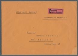 Liechtenstein - Dienstmarken: 1936-1965, Neun Verschiedene Belege, Teilweise Bedarfsbriefe Des Landg - Service