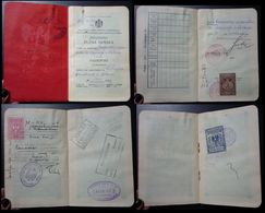 Yugoslavia C1926 Slovenia Croatia Vintage Expired Passport Revenue Stamps Canada Germany Austria Switzerland BP11 - Documenti Storici