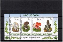 Moldova 2010 . Mushrooms. S/S Of 4v: 1.20, 2, 5.40, 7. Michel # BL 49 - Moldavia