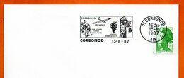 01 CORBONOD   VOL A VOILE SA ROUSSETTE  1987 Lettre Entière N° ST 311 - Storia Postale