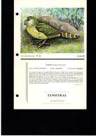 Fiche Illustrée Médicament Année 70' Laboratoire Oiseau Kakapo - Animali