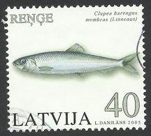 Latvia, 40 S, 2005, Scott # 621, Mi # 640, Used. - Letonia