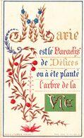IMAGE PIEUSE Religieuse De 1880 En Couleur De Turgis - Religion Catholique Catholicisme - MARIE Paradis Délices Vie - Devotieprenten