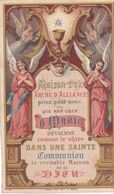 IMAGE PIEUSE Religieuse En 1880 En Couleur De Turgis - Religion Catholique Catholicisme - Maison D'or - Arche D'aliance - Devotieprenten