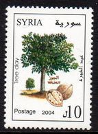 Syrie Syria 1271 Arbre, Noix, Noyer - Frutta