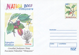 89517- CORNELIAN CHERRY, FRUITS, FOREST'S MONTH, PLANTS, COVER STATIONERY, 2003, ROMANIA - Frutta